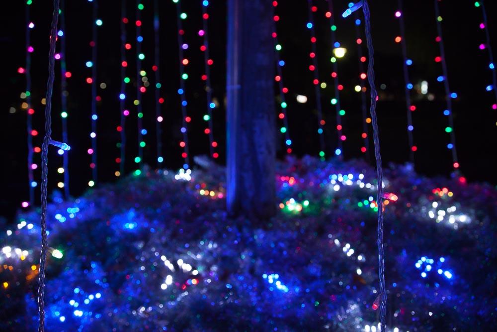 クリスマスツリーの根元