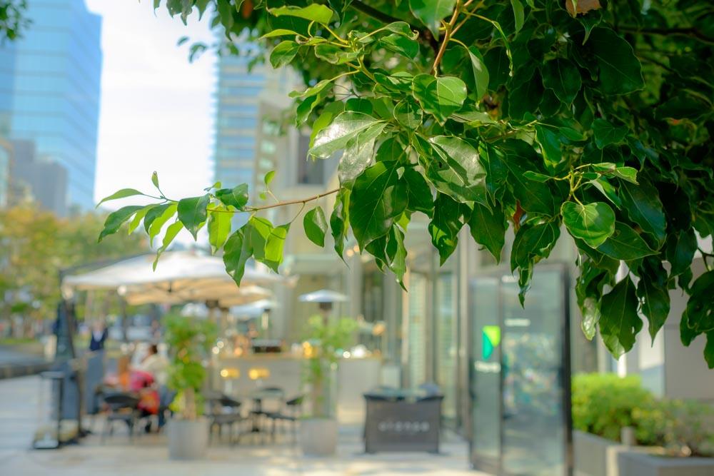 都会のオープンカフェ